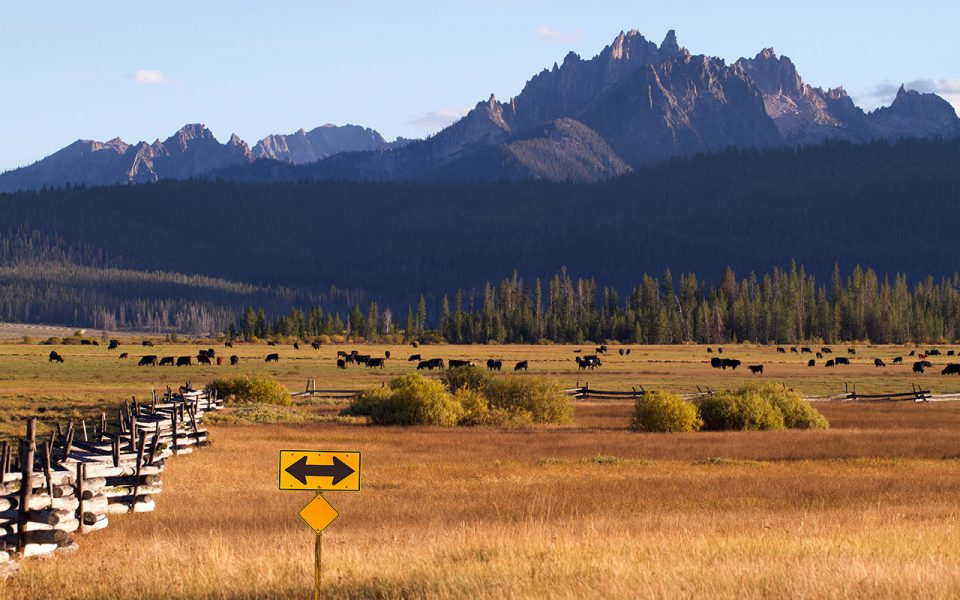 Range land in Sawtooth Mountains, Stanley, Idaho