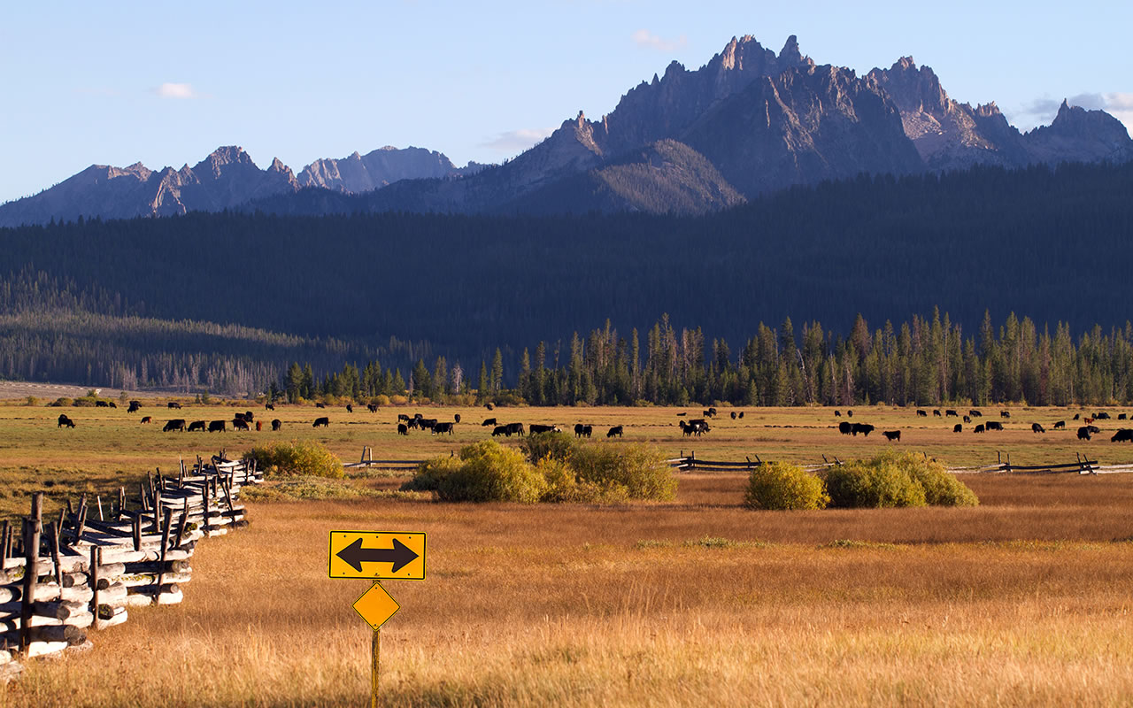 1935Range land in Sawtooth Mountains, Stanley, Idaho